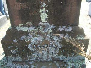 Union Cemetery (11)